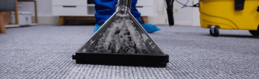 clean roundworms from carpet