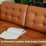 Why Is My Leather Couch Cracking: Solved!